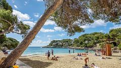 Mallorca20180412-08002 (franky1st) Tags: spanien mallorca palma insel travel spring balearen urlaub reise santanyí illesbalears
