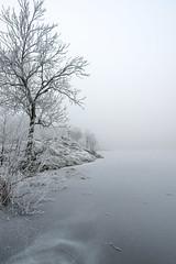 Frozen (~ Maria ~) Tags: winterscene frozenlake frozen cold mariakallinphotography drevviken january 2018 frost häkarängsbadet