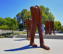 """""""Legs"""" at downtown Vancouver . . . (Clement Tang **busy**) Tags: legs summer travel vancouverdowntown sculpture artinstallation artwork sunny bluesky greentrees shadow sidelit canada nationalgeographic scenicsnotjustlandscapes landscape karinbubaš concordians"""