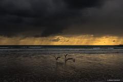 Partida (AvideCai) Tags: avidecai paisaje playa agua mar cielo nubes atardecer canon1635