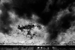 Sky 555 (soyokazeojisan) Tags: japan osaka sky clouds bw blackandwhite monochrome analog city olympus m1 21mm trix kodak film 1970s memories 昭和 1974