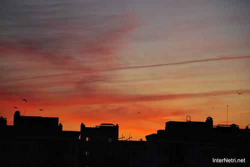 Небо Схід Сонця InterNetri Ukraine  69