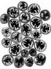 58908.03 Solanum lycopersicum 'Lemon Boy' (horticultural art) Tags: horticulturalart solanumlycopersicum solanum tomato tomatoes slices blackandwhite bw negative fruit food