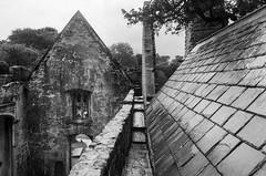Muckross Abbey (beeldmark) Tags: gebouw kerk ierland killarney building cillairne ireland kerry éire ie