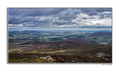 Over the Shire 2 (Aberdeenshire) (The Terry Eve Archive) Tags: buckofcabrach aberdeenshire hill mountain purpleheather heather moorland grousemoor view viewpoint patchwork