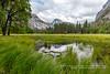 Half Dome Reflection (rkpunnamraju) Tags: reflection clouds yosemitevalley valley nationalpark nps halfdome yosemite