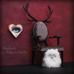 Fluffity (pure_embers) Tags: pure embers laura uk pureembers photography kitty teddy mr whiskers fluffity von kittytoes fluffy white cat cute scaredy antlers chair eye painting handmadeartforyou