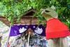 At A Tiny Shrine (somazeon) Tags: shrine bokeh komainu japan rx100m3 sony tottori
