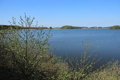 Røgbølle Sø (harve64) Tags: klosterrute lolland denmark røgbølle sø alsø lake spring