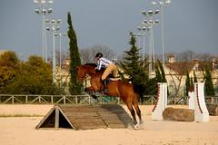 Jump !! (Raquel Borrrero) Tags: horse sport riding equitación salto jinete rider jerez de la frontera cádiz spain españa jump pradera obstáculo caballo animal