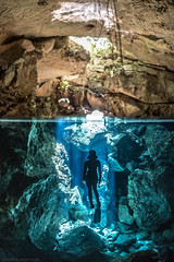 """""""The most beautiful experience we can have is the mysterious"""" - Einstein (NickPolanszkyPhotography) Tags: nick polanszky underwater photography canon 5diii aquatica cenote chikin ha riviera maya mexico tulum cenotes freediving freediver"""