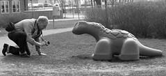 Hey, Mister...I'm Waiting... (brandsvig) Tags: park f 2018 svedala skåne april sverige sweden väntan waiting lx7 fotograf photographer lumixlx7 kneeling bw red röd patience tålamod