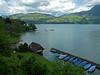 Thunersee (duqueıros) Tags: schweiz suisse switzerland kantonbern berneroberland spiez brienzersee see lake duqueiros