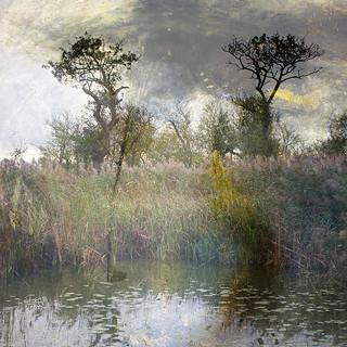 L'étang perdu