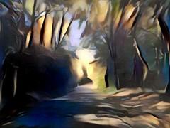 espressionismo (fotomie2009) Tags: strada bosco fantasia textured ddg street fantasy painting forest road