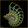 A Few Too Many (Donna Brittain - See what I see) Tags: glow fractal nautilus wineglass shell
