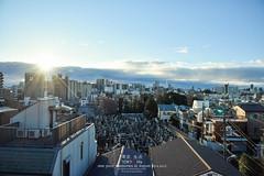 Morning Sun on the Tokyo City (Pop_narute) Tags: morning sun light sunrise sky 空 tokyo city cityscape landscape urban japan housing