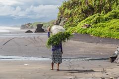 Bali (Seval Aydoğan) Tags: kecamatantabanan bali indonesien id