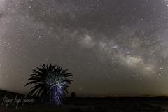 Calblanque (Miguel Ángel Giménez-Murcianico) Tags: cartagena calblanque nocturna via lactea estrellas