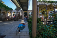 DSC01644 (Damir Govorcin Photography) Tags: paddington reservoir gardens sydney people architecture wide angle natural light sony a7rii zeiss 1635mm composition