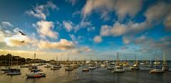 Monterey Harbor at Sundown (Thanks for 1.4 million views) Tags: kando sony sailboat monterey harbor california pacific cloud