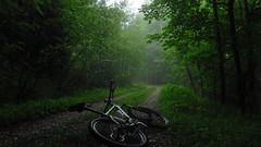 Heuberg (twinni) Tags: mw1504 20052018 bike mtb heuberg salzburg austria österreich flachgau bergziege winterbike winterradl 20