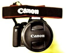 #beast #myfav #love #canondigital #canond700 #canonlove #canonlens #beastonhunt #bokeheffect (akshat.shre) Tags: beastonhunt bokeheffect love canondigital canond700 myfav beast canonlove canonlens