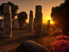 Chinese Reconciliation Park, Tacoma, WA (wileygerald) Tags: tacoma sunrise