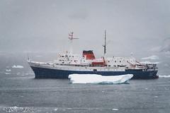 M/V Ushuaia (robertopastor) Tags: antarctica antarctique antarktika antartic antártida fuji robertopastor xt2 xf14xtc xf100400 aq mv ushuaia buque antarpplyexpedition