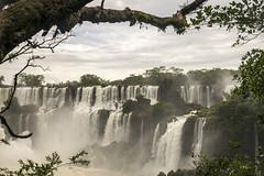 Landscape, Iguazu (glennlbphotography) Tags: americalatina argentina chutesdiguaçu fozdoiguaçu iguazu iguazufalls iguaçu southamerica cataratasdeiguazu chutesdiguazu iguaçufalls journey nature travel viagem viaje voyage