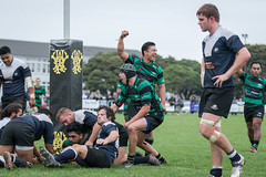 Wainui Rugby (NZL365) Tags: rugbyphotography rugby rugbyfootball rugbyunion sportsphotography sportsfan sports action sportsphoto canon7dii wainui petone petonerugby 365project 365photochallenge project365 canonphotographer 365days