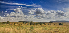 The Finest Kind Of Blues (AnyMotion) Tags: sky himmel clouds wolken savannah savanne landscape landschaft landschaftsaufnahmen 2018 anymotion serengetinationalpark tanzania tansania africa afrika travel reisen nature natur 7d2 canoneos7dmarkii