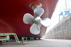 Mai 2018 -  Port de Brest -505 (Margodenn.) Tags: boris vilkitsky damen brest port dock yard