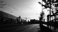 The street gets dark (frankdorgathen) Tags: blackandwhite monochrome schwarzweis schwarzweiss essen altendorf ruhrgebiet ruhrpott perspective perspektive wideangle weitwinkel sony alpha6000 dark street streetphotography backlight gegenlicht tree baum silhouette 1018mm