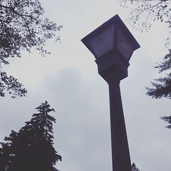 dead lamp post (HalcyonPhotos) Tags: dead lamp post letchworth ny rainy clouds weather autumn evening