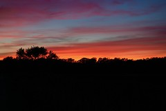 Sunset over Great Meadows (ole_G) Tags: