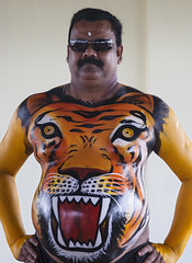 Tiger Dance Festival (Sharpshooter Alex) Tags: tiger dance festival india indian man male culture torso potbelly painted body art