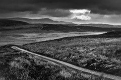 The Road to Pumlumon (Alan Hughes Mach) Tags: cymru wales uk machynlleth dylife pumlumon glaslyn bugeilyn lake mountain landscape landschaft scenery moorland outside walk hike walking hiking road track path monochrome mono noiretblanc blackwhite bw bnw blackandwhite paysage paisaje 50mm lines shadows contrast natural naturaleza hill rural countryside natur dof canon eos 200d canonsl2 canonrebelsl2 canon200d spring april outdoors shadow moody trail canonef50mm18stm