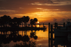 Sunrise (mimsjodi) Tags: titusvillefl sunrise marina palmtrees palms boats sky clouds dawn bird reflection indianriverlagoon cloudsstormssunsetssunrises