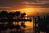 Sunrise (mimsjodi) Tags: titusvillefl sunrise marina palmtrees palms boats sky clouds dawn bird reflection indianriverlagoon cloudsstormssunsetssunrises