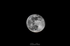 (oresthorbal) Tags: moon dark night longexposure light 300mm