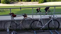 Helsinki velodrome (hugovk) Tags: bike cycling bicycle velodrome helsinki wauhtiajot velorution ratapyöräilytapahtuma velorutionratapyöräilytapahtuma helsinkivelodrome kamppi helsingin uusimaa finland geo:neighbourhood=kamppi geo:locality=helsinki geo:county=helsingin geo:region=uusimaa geo:country=finland camera:make=samsung camera:model=smg950f exif:orientation=horizontalnormal exif:exposure=1676 exif:aperture=17 exif:isospeed=40 exif:exposurebias=0 exif:flash=noflash exif:focallength=42mm meta:exif=1524920204 hvk hugovk samsung smg950f samsungsmg950f cameraphone s8 samsungs8 galaxys8 samsunggalaxys8 helsingfors nyland suomi cycle polkupyörä fillari 2017 august summer kesä