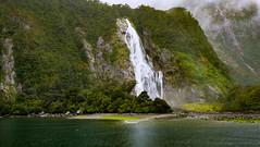 Adventurer's Paradise (MrTheEdge7) Tags: newzealand fiord fjord sound milfordsound milford mountain mountains mountainrange sheer rock fjordland fiordland queenstown teanau southisland fiordlandnationalpark piopiotahi maori plants tasmansea waterfall waterfalls