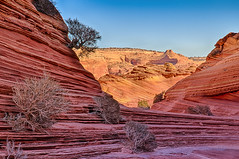 The Wave (William Horton Photography) Tags: arizona navajoformation navajosandstone nikon northcoyotebuttes page pariacanyon pariacanyonvertical thewave vermillioncliffs vermillioncliffswilderness color cool geology horizontal orange outdoors red sandstone scenic spring striations