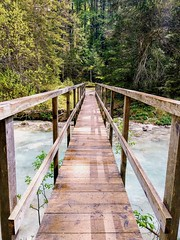 Vrata valley (LG_92) Tags: slovenia triglav national park vrata valley bridge wooden wood timber forest path nature spring may 2018 nikon dslr d3100 brook stream water mojstrana