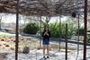 IMG_1759 (iphoneofkhanh) Tags: 12052018 botanic loyal garden g
