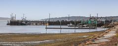 Wellfleet Pier on a Dreary Day (Samantha Decker) Tags: canonef24105mmf4lisusm canoneos6d capecod ma massachusetts newengland outercape samanthadecker wellfleet pier