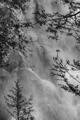 Shannon Falls 1 || BC (David Marriott - Sydney) Tags: squamish britishcolumbia canada ca shannon falls waterfall black white bw