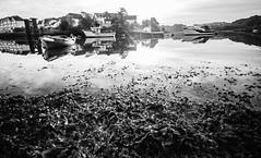 Light on the lake (NikNak Allen) Tags: plymouth plympton hooe turnchapel devon seaweed reflection sea water boat boats mooring sunrise sky grey black white blackandwhite longexposure 10stop seascape
