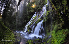Panther, behind the falls (Matt Straite Photography) Tags: waterfall water river stream creek panther sun sunburst washington columbia columbiarivergorge gorge trail hike cat
